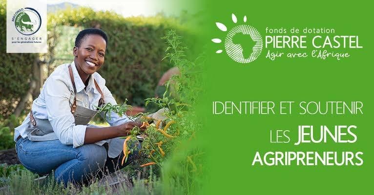 RDC : Bracongo lance les inscriptions des candidatures au Prix Pierre Castel édition 2021 ! 1